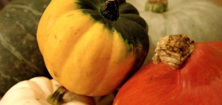Squash & Pumpkin